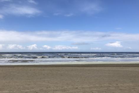 Noordwijkse Duinen zee