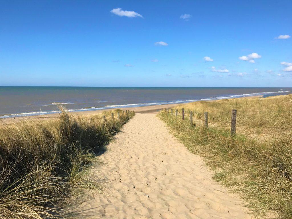 Noordwijk duinen