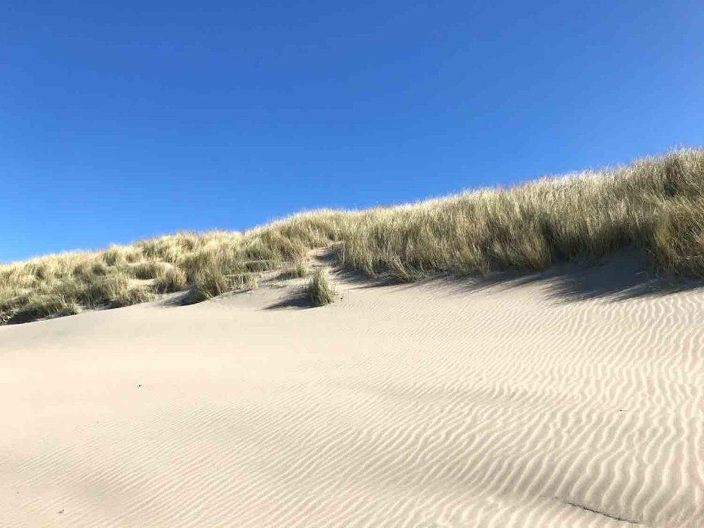 Noordwijk duin strand